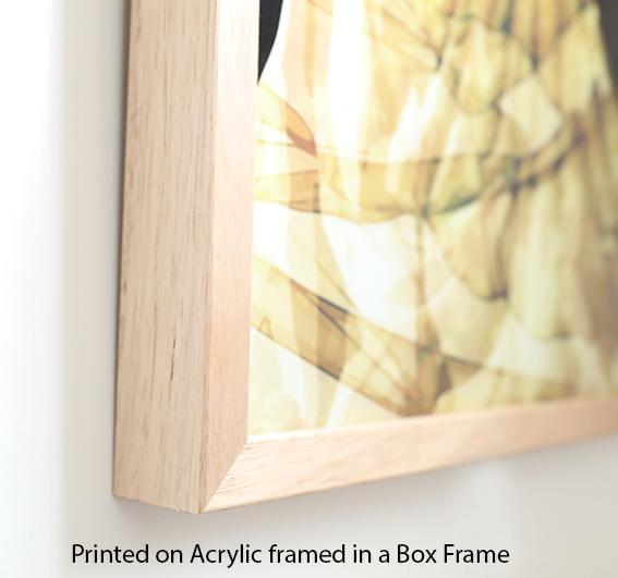 Acrylic Framed Box_3