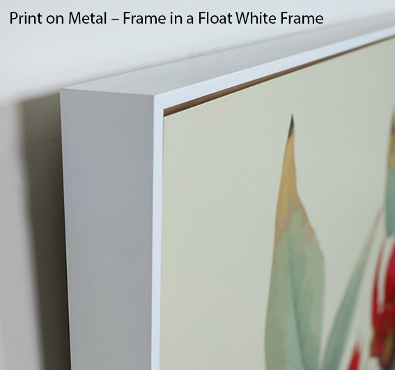 Print on Metal - Float white Frame_2