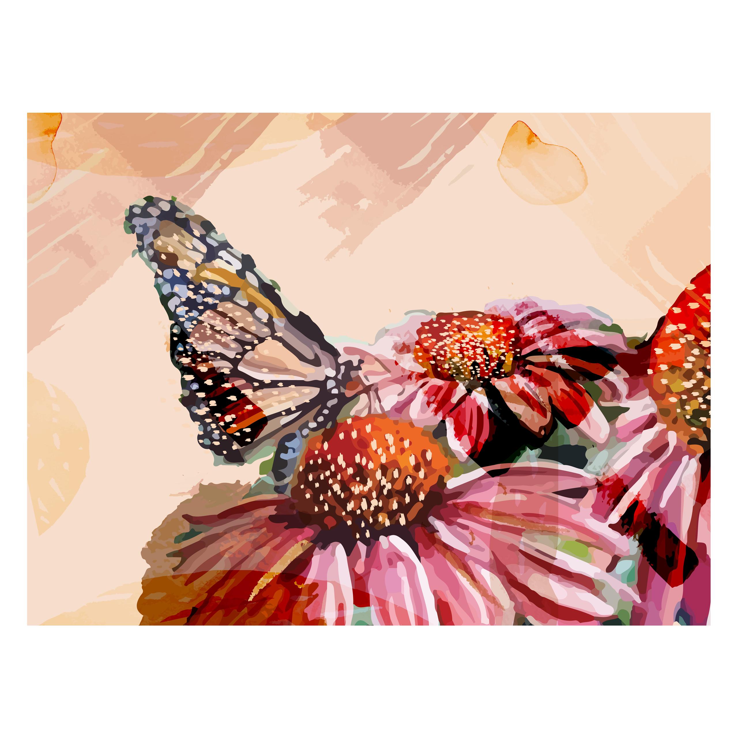 Butterfly in Spring_fullsize